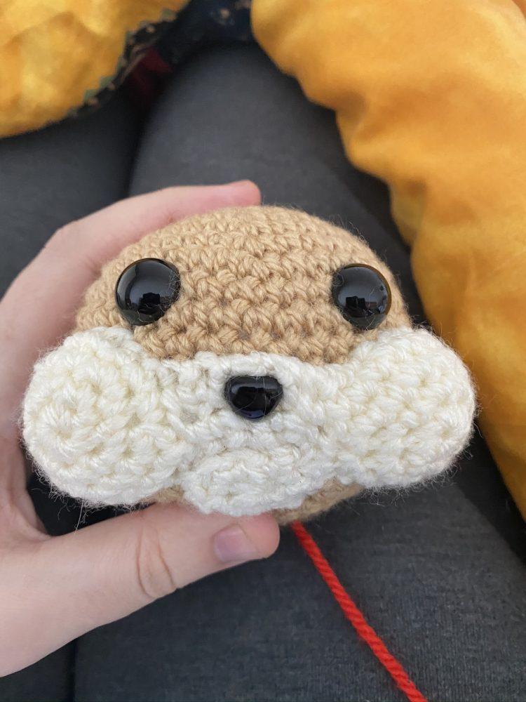 HamsterOhrlos
