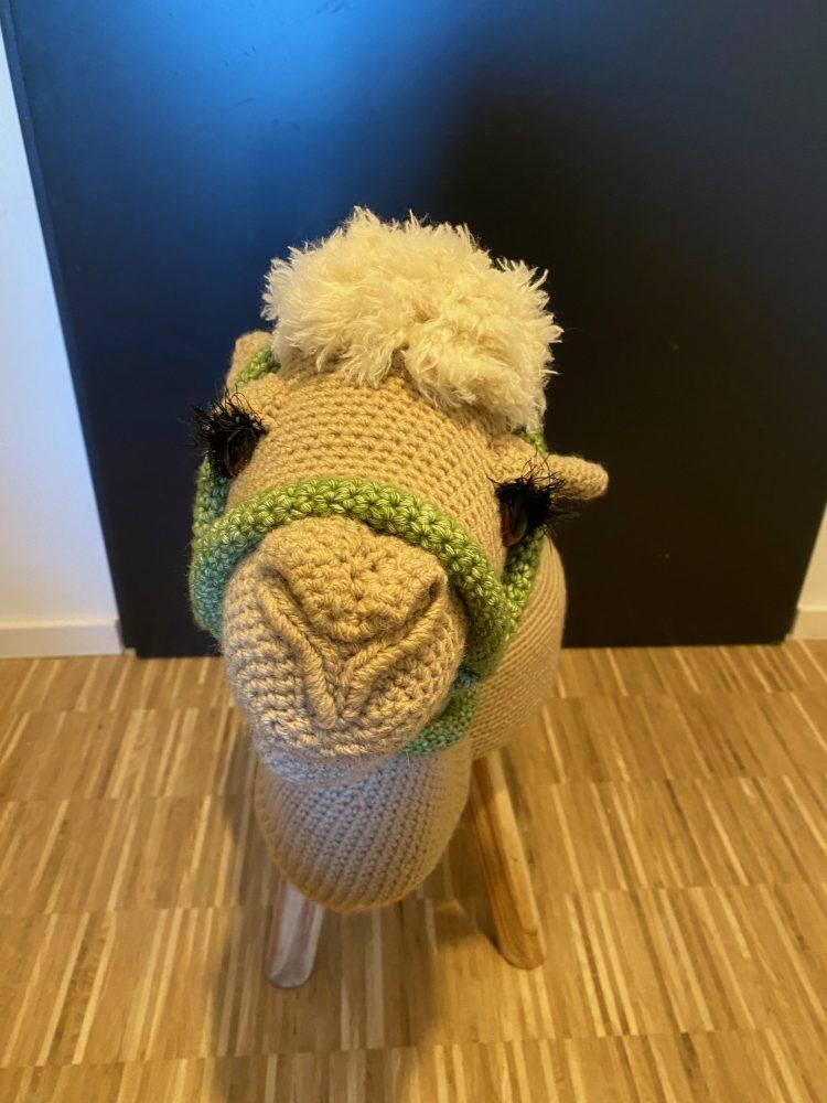 Kamel-Hocker